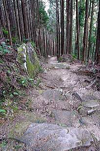 古道 熊野 水森 かおり